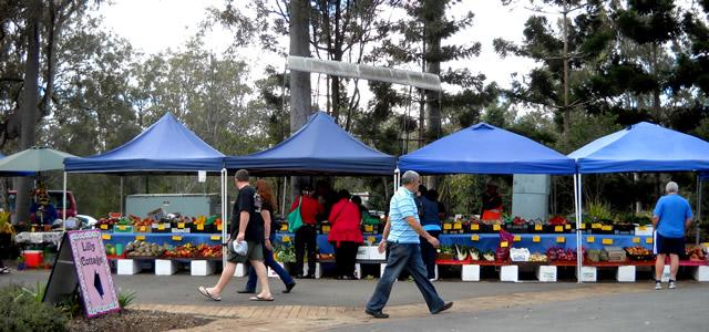 North-Pine-Markets-med